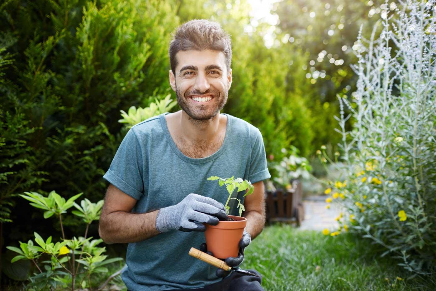 qualified landscaper planting sapling
